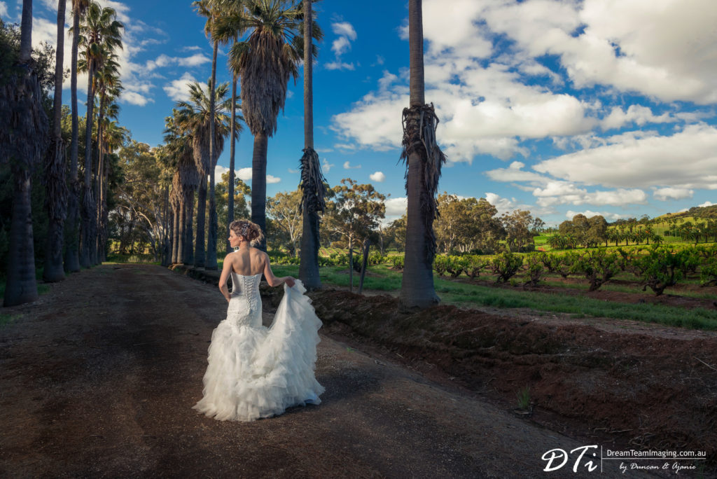 Seppeltsfield Winery Weddings Photographer in Australia