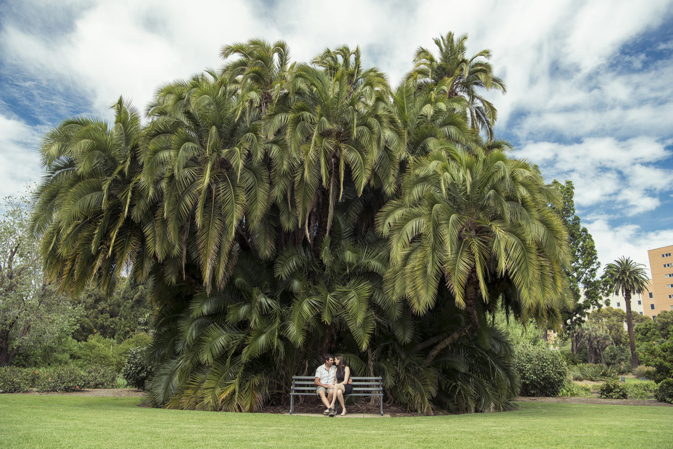 botanical garden pre wedding