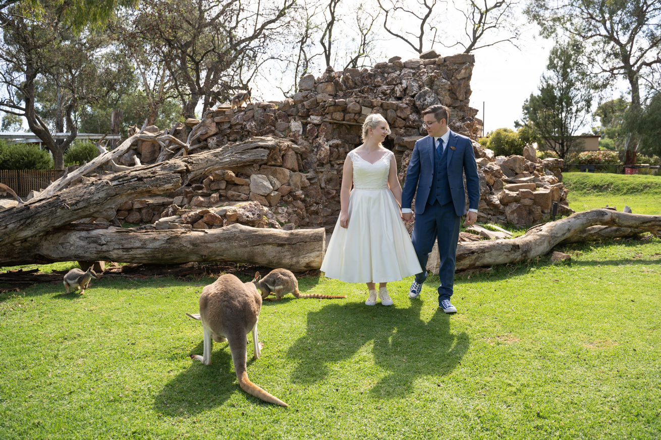 Adelaide Zoo Wedding