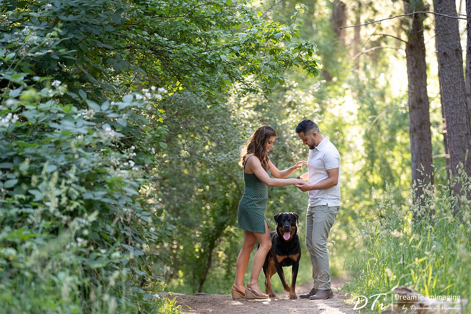 Adelaide hill pre wedding, DreamTeamImaging, pets in weddings